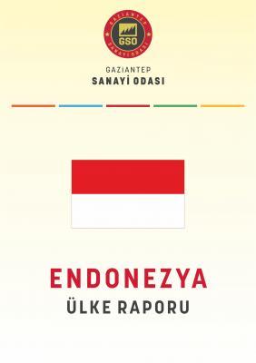 Endonezya Ülke Raporu