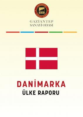 Danimarka Ülke Raporu 2021