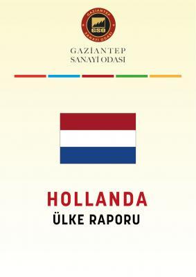 Hollanda Ülke Raporu 2020